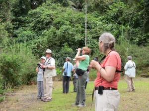 Hawks Aloft members watch birds on our 2015 field trip to Costa Rica