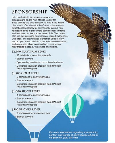 Hawks Aloft Sponsorship FLYER_6-1-16b.indd