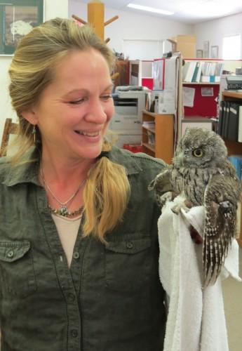 Lisa Morgan, the Wildlife Rescue Coordinator, and a western-screech owl