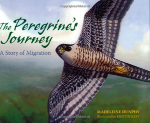 The Peregrine's Journey by Madeline Dunphy