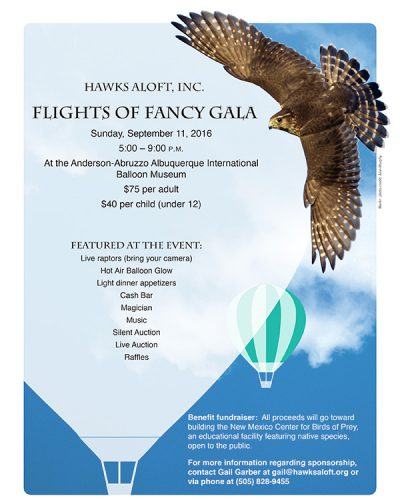 Hawks Aloft SAVE THE DATE FLYER_6-1-16b.indd